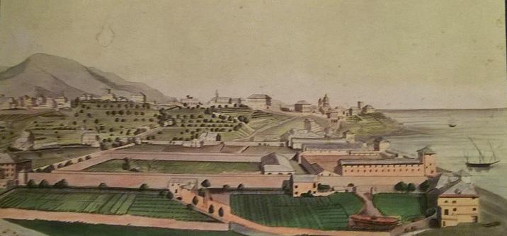 Albaro, La guerra in Val Fontanabuona e la «Vandea» ligure